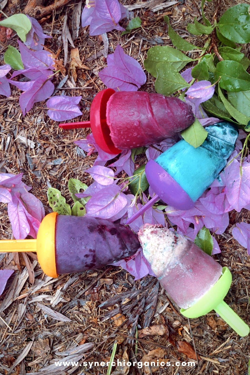 summer ice lolly recipes
